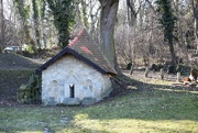 13th Feb 2020 - Weird house on the edge of the forest.