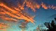 20th Feb 2020 - Good Morning Sunrise ~