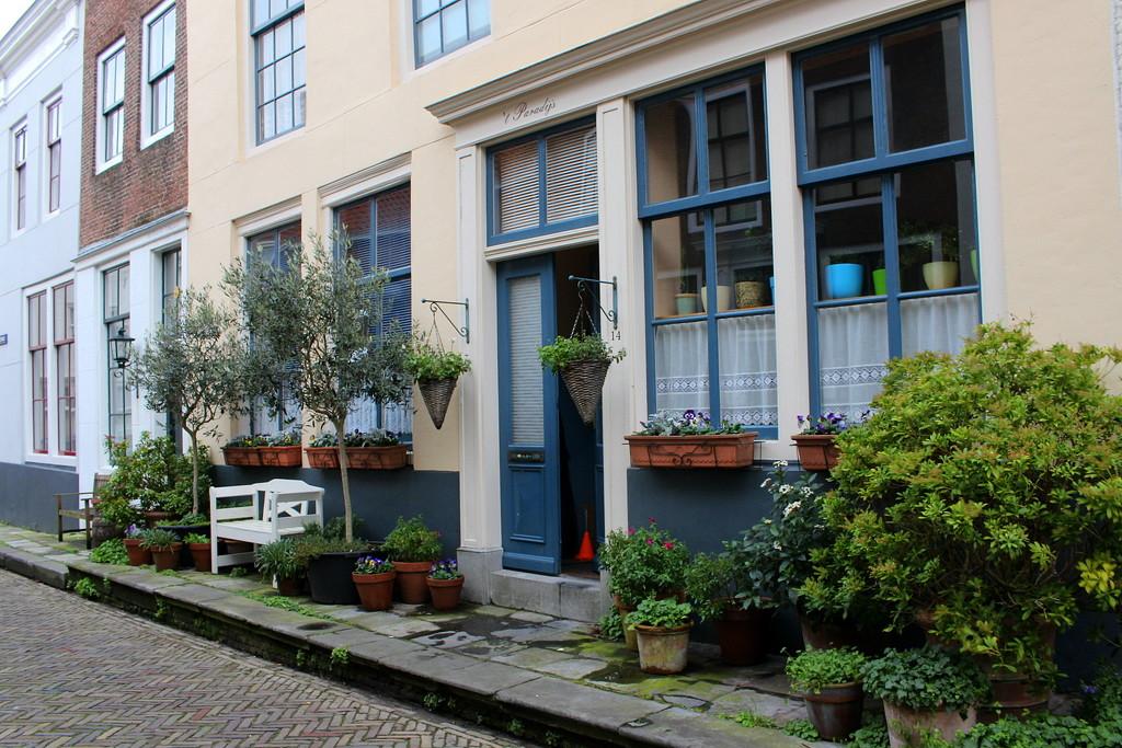 Street gardens 6  by pyrrhula