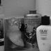 Powder Room Essentials