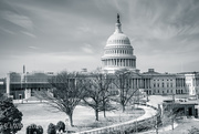 19th Feb 2020 - Window View