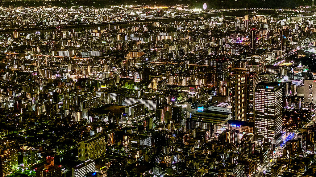 The View from the Sky Tree by jyokota