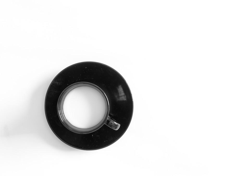 White in Black, Black on White by salza