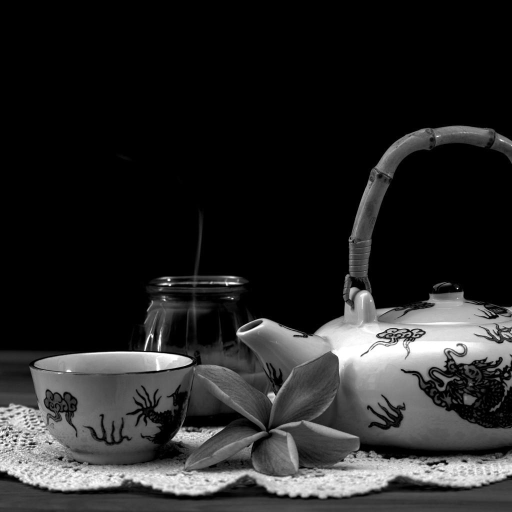 Tea TimeDSC_0575 by merrelyn