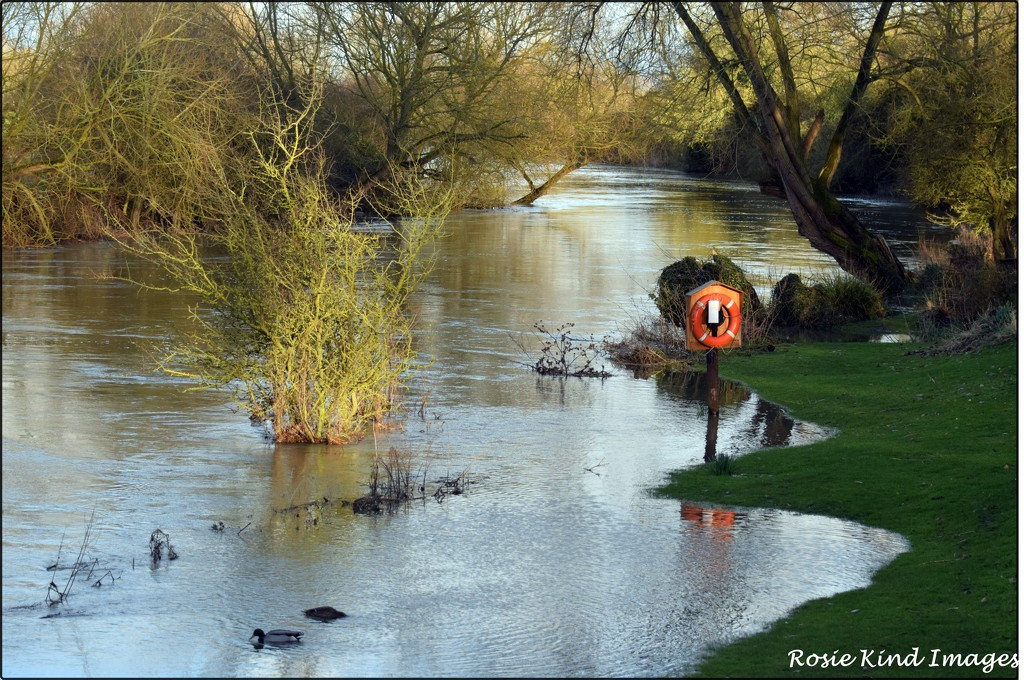 River Great Ouse by rosiekind