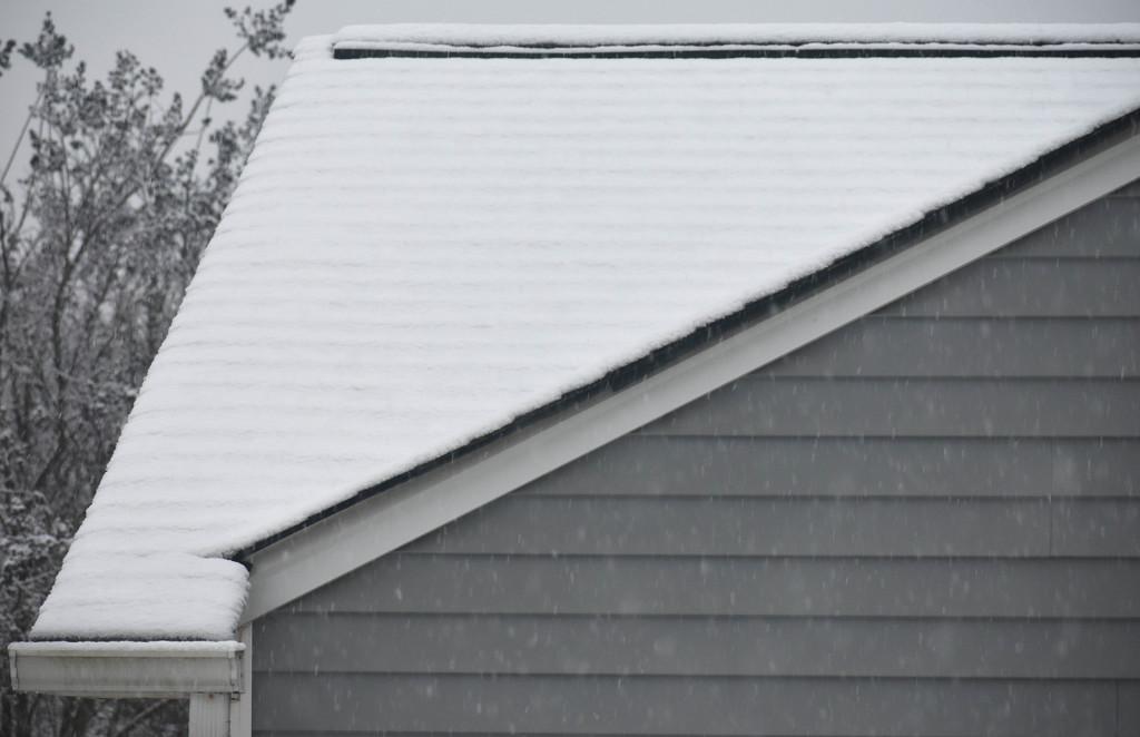 SNOW! NOOOOOO! by homeschoolmom