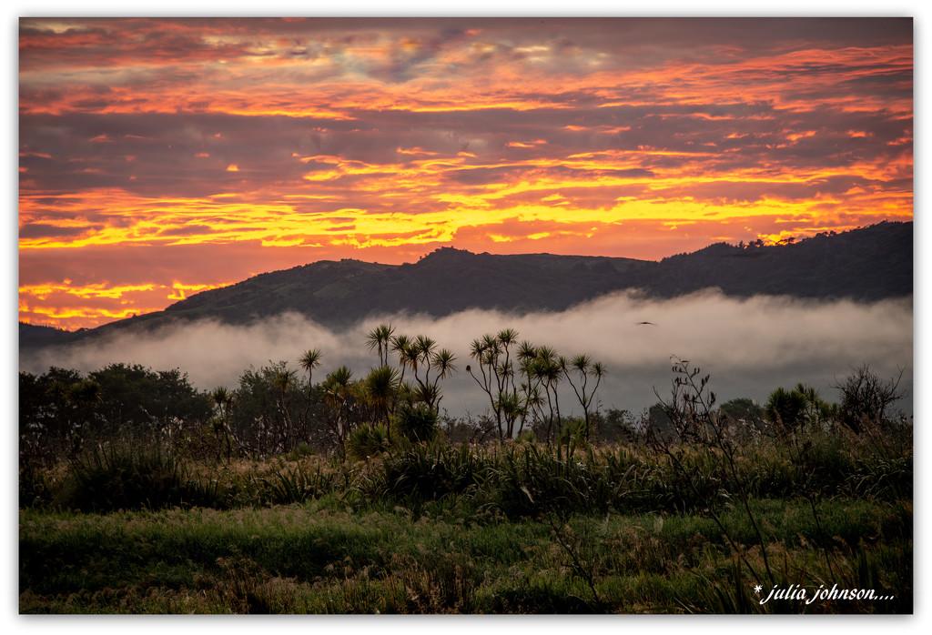 Waikato River Sunrise.. by julzmaioro