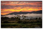 21st Feb 2020 - Waikato River Sunrise..