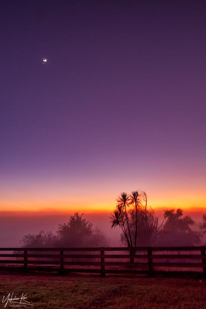 Sunrise by yorkshirekiwi