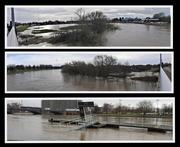 18th Feb 2020 - River Trent Nottingham 3