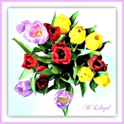 21st Feb 2020 - Tulip Bouquet