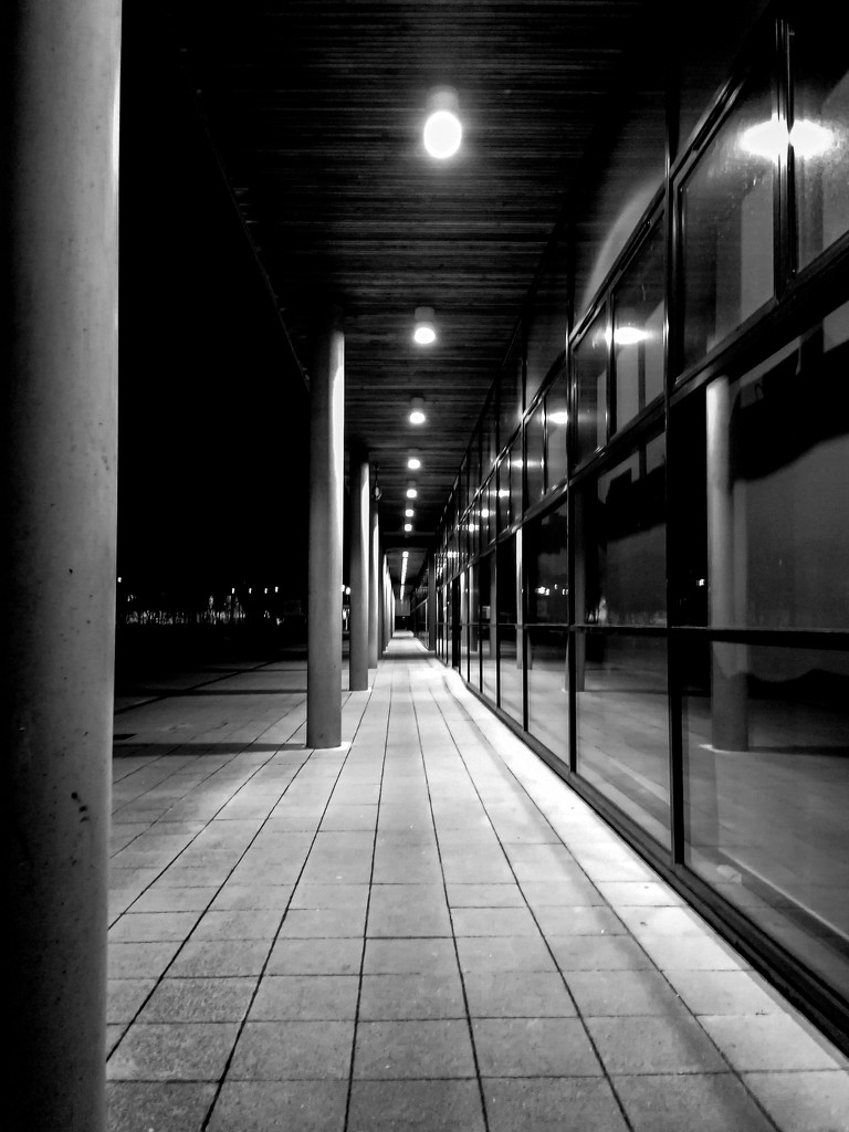 Follow the Light! by rjb71