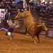 LHG_0885-Bull  says get OFF Cowboy