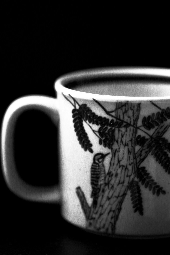 Favorite Mug  by mzzhope