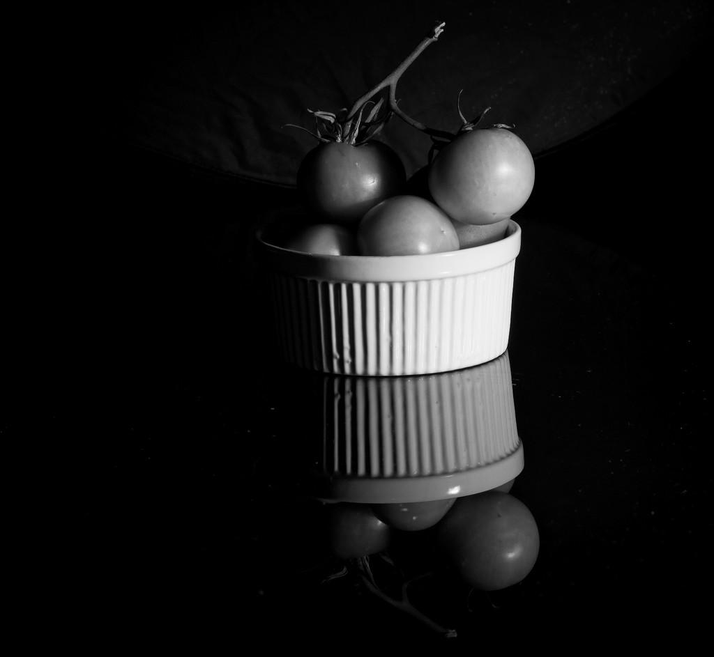Everyday life - harvesting tomatoes by kiwinanna