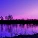 February Sunrise by lynnz