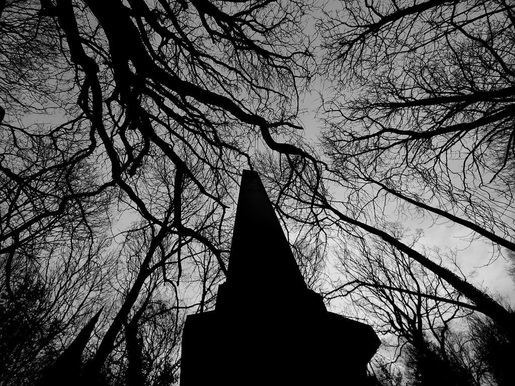 General cemetery - Sheffield by isaacsnek