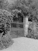 6th Feb 2020 - The garden gate