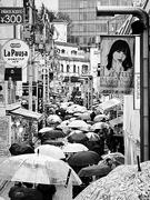 29th Jan 2020 - Umbrellas on Takeshita Doori