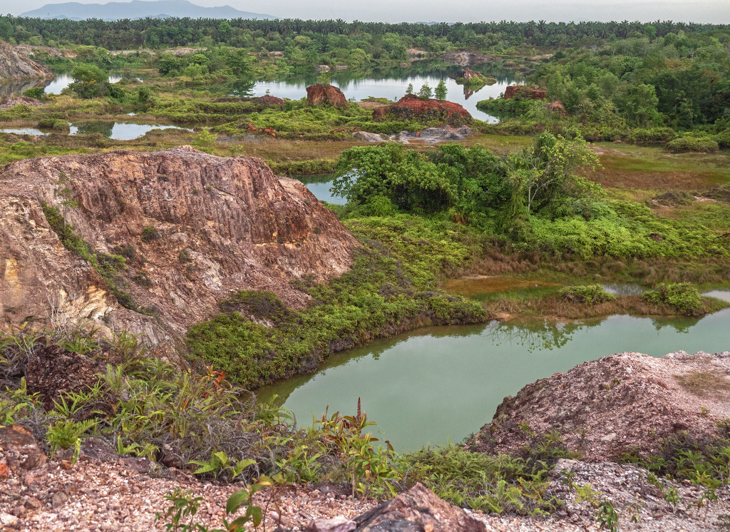 Lagoons Guar Petai by ianjb21