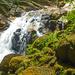Cascades Junjong