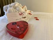 16th Feb 2020 - Valentines at Hotel Bloom