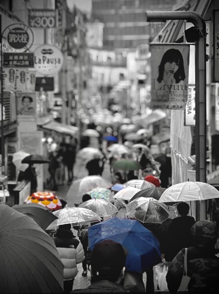 rain all day by vankrey