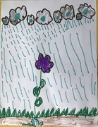 20th Feb 2020 - Rain on the purple flower