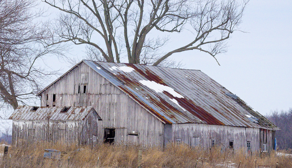 Union County barn by ggshearron