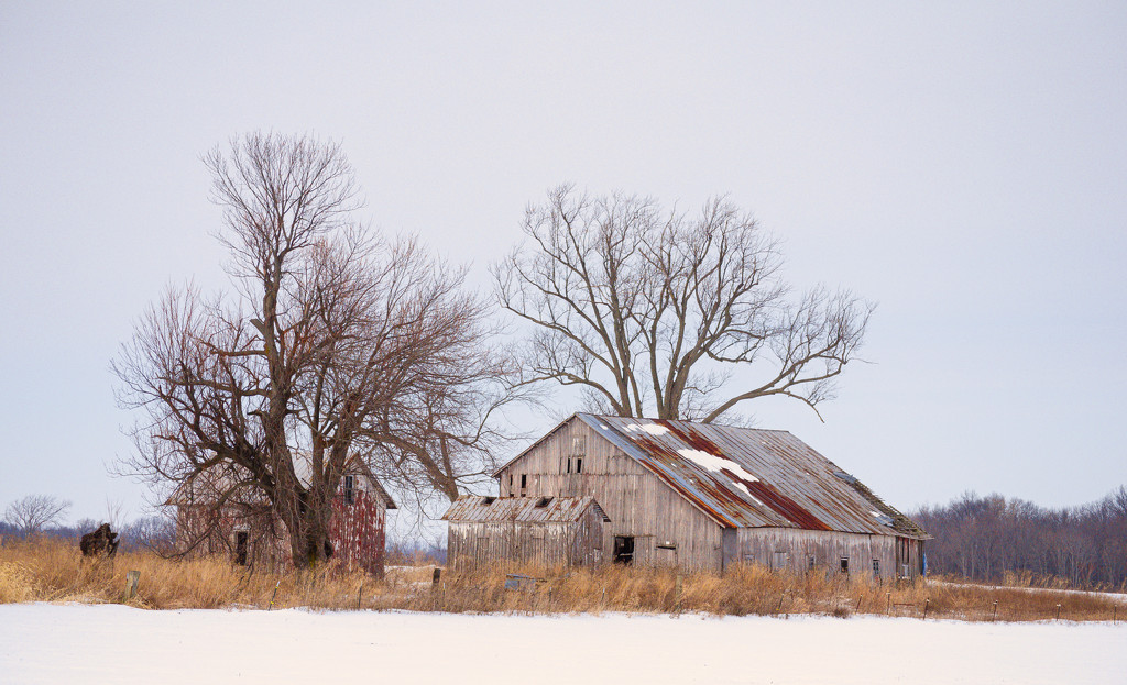 Union County barn II by ggshearron