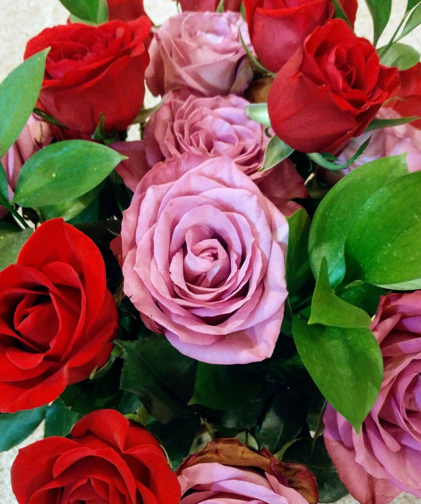 Bouquet of Roses by harbie