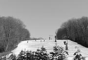 24th Feb 2020 - Skiing