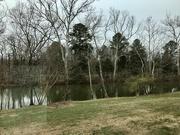 25th Feb 2020 - Along the James River