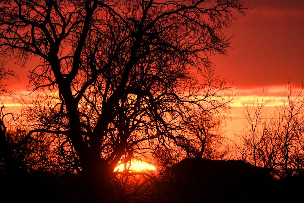 Kansas Sunset 2-24-20 by kareenking