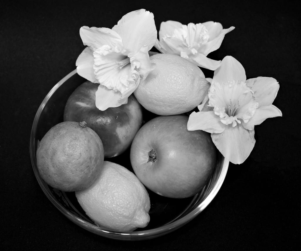 Fruit and Flower Still Life by homeschoolmom