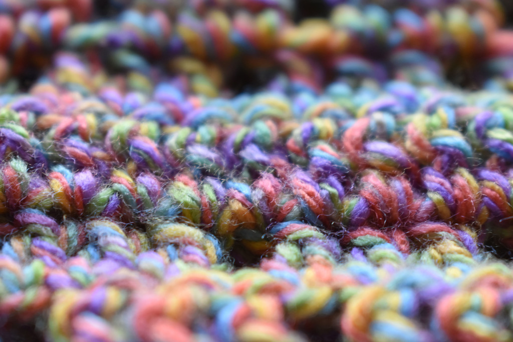 Colorful Macro by homeschoolmom