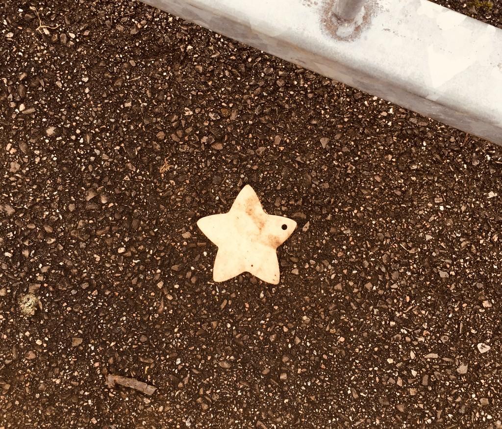 Another fallen star by denidouble