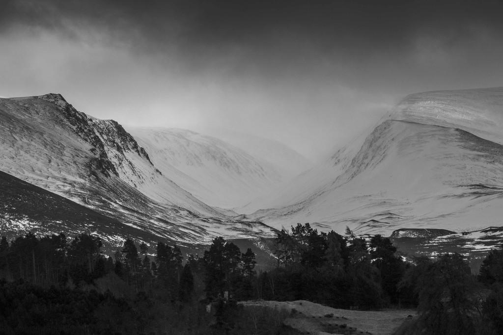 Cairngorms, Scotland by shepherdmanswife