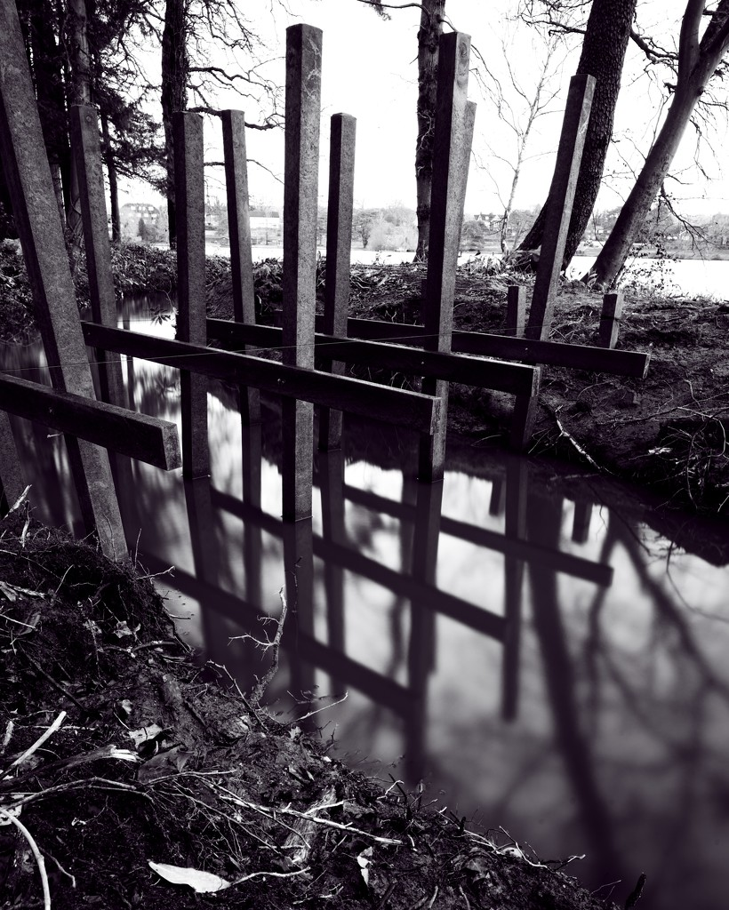 Bridge  by moonbi