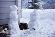 23rd Feb 2020 - The snowmen
