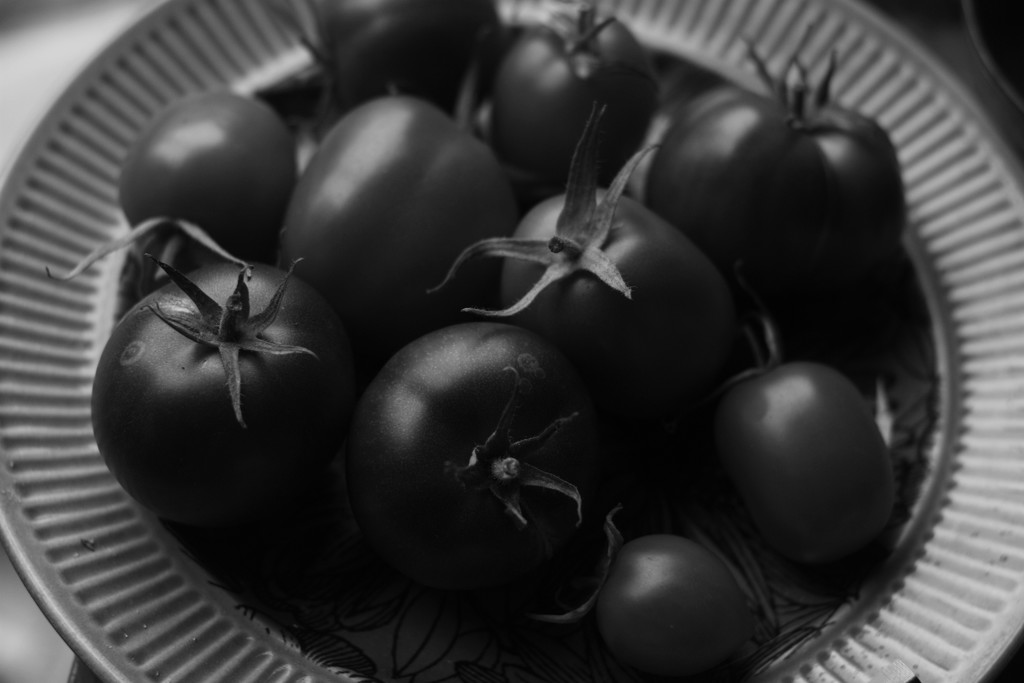 black tomatoes by kali66
