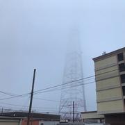 27th Feb 2020 - Fog Alert for Richmond