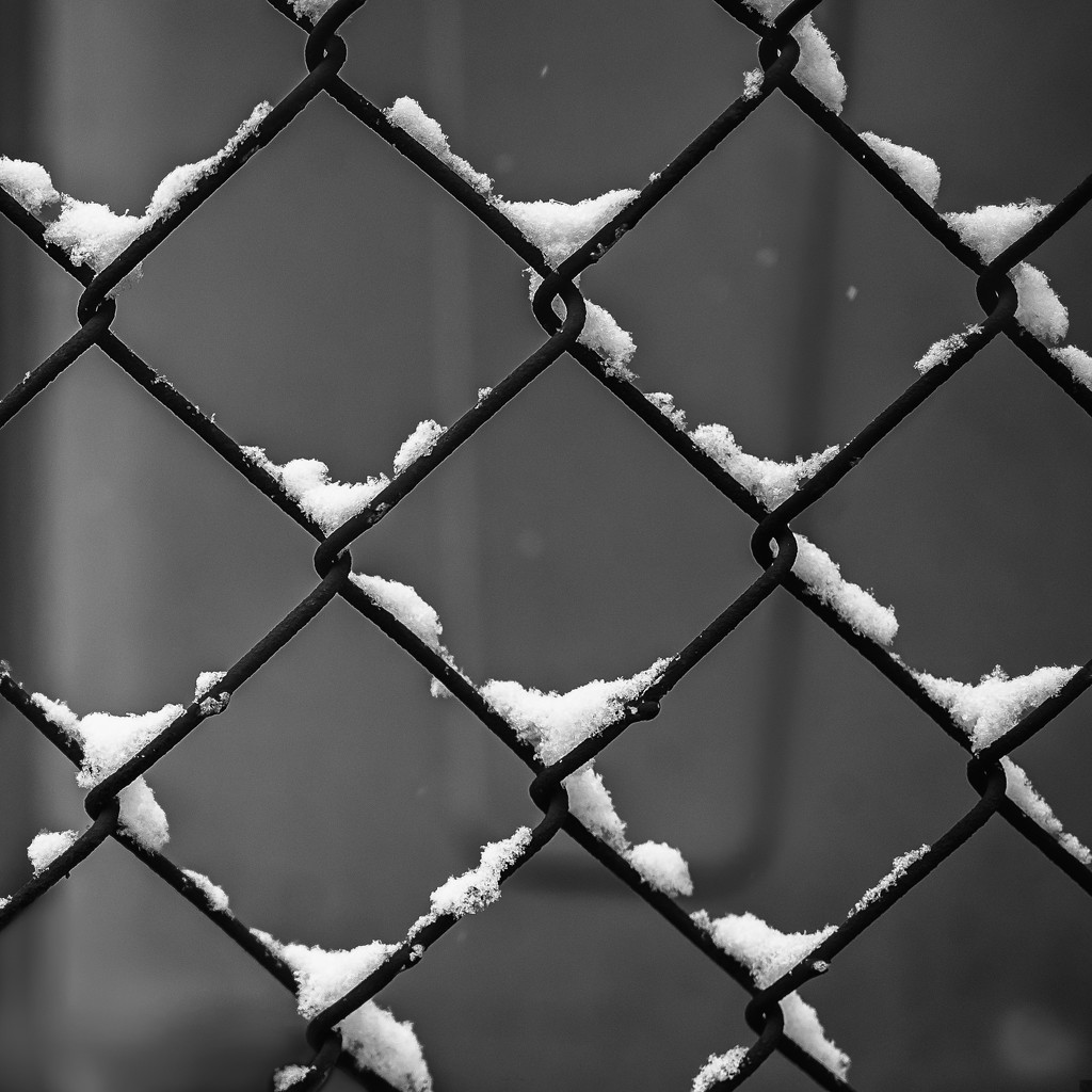 Snow In The Fence by rosiekerr