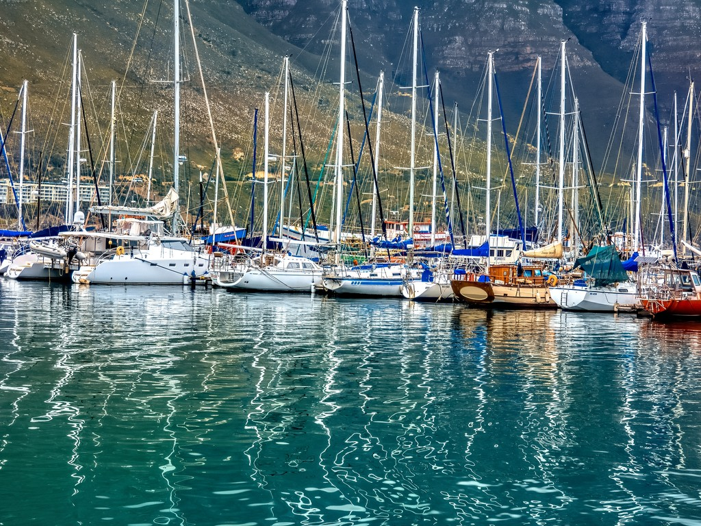 Hout Bay harbour by ludwigsdiana