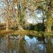 Reflections by bigmxx