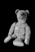 27th Feb 2020 - Introducing 'Tedward'