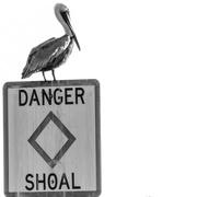 27th Feb 2020 - Danger!