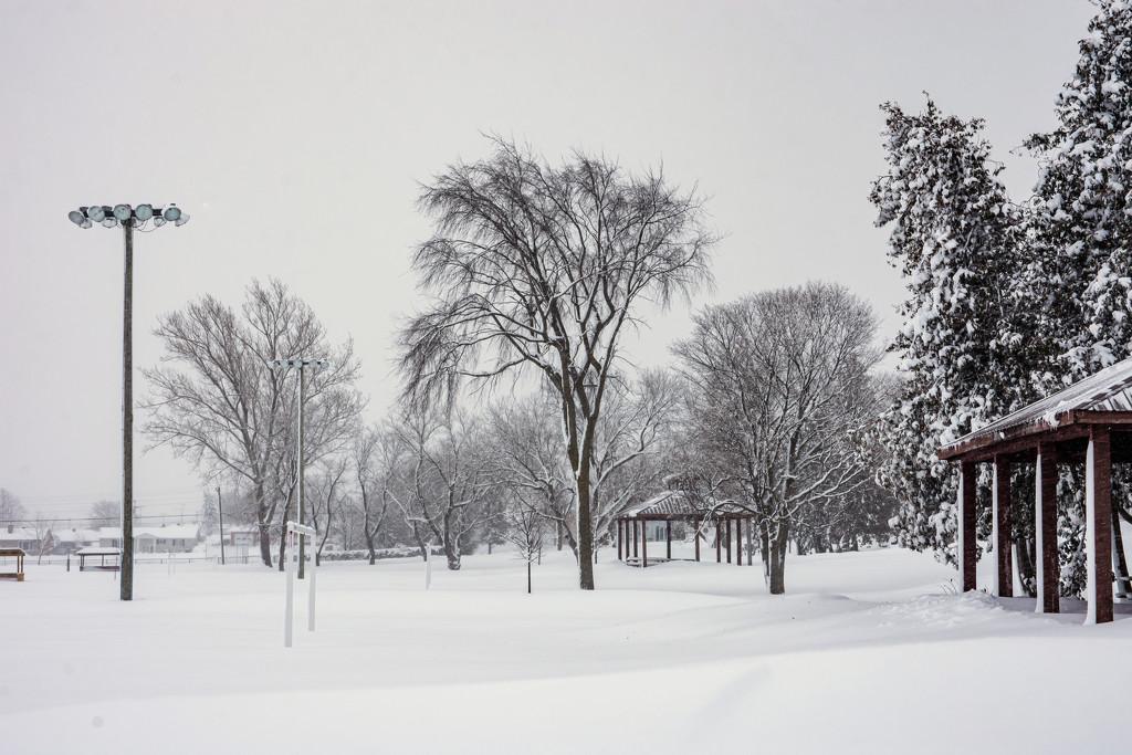 Winter at Island Park by thedarkroom