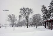 27th Feb 2020 - Winter at Island Park