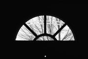 15th Feb 2020 - Window features